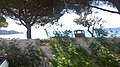 Le Lavandou, France - panoramio (73).jpg