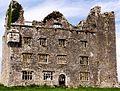 Leamaneh castle1.jpg