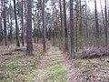 Lentvario sen., Lithuania - panoramio (65).jpg