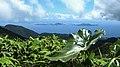 Les Saintes vue de la Soufrière, Guadeloupe.jpg
