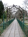 Lime Walk, Clifton Graveyard. - panoramio.jpg