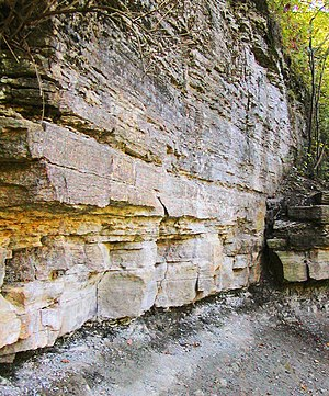 Platteville Limestone - The Platteville Limestone cropping out in Minnehaha Falls Park, Minneapolis, Minnesota. The Platteville Limestone is the less-eroded, layered unit that constitutes the majority of the photo. Below it is a thin, dark layer of Glenwood Shale. Below the shale is a thin, white stripe of St. Peter Sandstone, followed by a slope of eroded St. Peter Sandstone material.