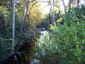 Little Chico Creek.jpg