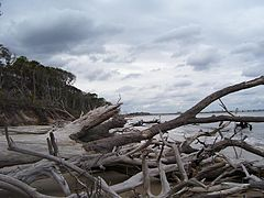 Little talbot islands state park 2