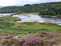 Loch Duartmore - geograph.org.uk - 607638.jpg