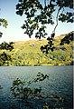 Loch Lomond - geograph.org.uk - 53457.jpg