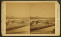 Log boom, Pioneers' saw mill, Minneapolis, Minn, by Woodward Stereoscopic Co..png
