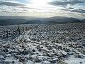 Looking SW from Waun-oer summit - geograph.org.uk - 319400.jpg