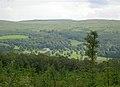 Looking Towards Kilkerran House - geograph.org.uk - 472289.jpg