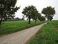 Looking north along Church Lane - geograph.org.uk - 595377.jpg