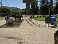 Los Angeles, CA, Griffith Park Pony Rides, End of the Trail, 2010 - panoramio.jpg