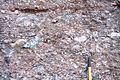Lower Permian fanglomerate.jpg