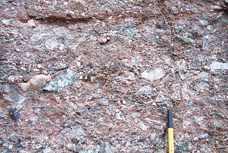 Permian conglomerate of the Eisenach formation from an alluvial fan below Wartburg castle Lower Permian fanglomerate.jpg