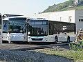 MAN Lion's Intercity & MAN Lion's City M - Synchro Bus (Chignin * printemps 2019).jpg