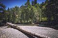 MRNP — Ohanapecosh River — 002.jpg