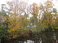 MSU 2014 River 4.jpg