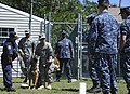 MWD medical training 130410-N-TC587-077.jpg