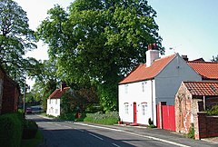 A pair of whitewashed cottages, with pantiled roofs, widely spaced along a road.  the nearer one has a red gate and a small pantiled outhouse.  A huge oak, in full leaf, stands behind the further one.
