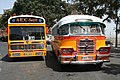 Malta Buses FBY 662 and FBY 784.jpg