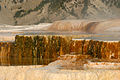Mammoth Hot Springs (3679472580).jpg
