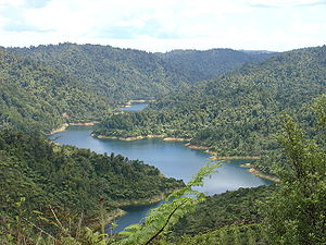 Hunua Ranges - Mangatangi reservoir in the Hunua Ranges