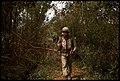Marines on Trail, Operation Trinidad II, 1966.jpg