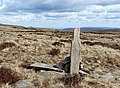 Marker post along the Beacons Way - geograph.org.uk - 729911.jpg
