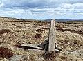 Marker post along the Beacons Way - geograph.org.uk - 729911.jpg