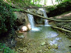 Stream from the Agnes waterfall in the Melegmány valley.