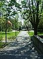 Miastko - park miejski.jpg