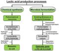 Microbial fermentation of lactic acid.png