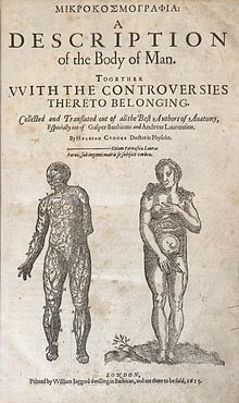 Title page of Helkiah's Crooke's text Microsmographiia: A Description of the Body of Man; underneath the title text are two naked, standing figures which face the viewer frontally; one figure is male and the other female; the male figure, whose upper torso is slightly turned to the right with its left hand hidden behind its back, is rendered to reveal the nervous system; the female figure's head is tilted to the right; its left hand covers one breast and its right hand covers its genitalia; the womb of the female figure is visible.