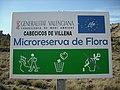 Microrreserva de flora Los Cabecicos.JPG