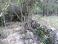 Molins de Balanyà - molí de més avall P1110972.JPG