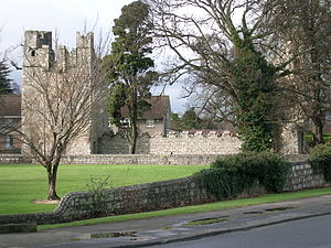 Monkstown, County Dublin - Monkstown Castle, viewed from the east.