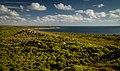 More coast - panoramio.jpg