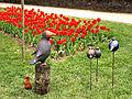 Morges-Fete Tulipe 4.jpg