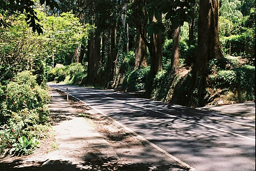 Mount Dandenong Tourist Road (39649400112)