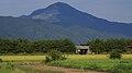 Mt ibuki01s3200.jpg
