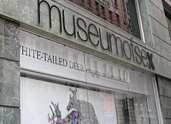 Museum of Sex, New York City, USA.jpg