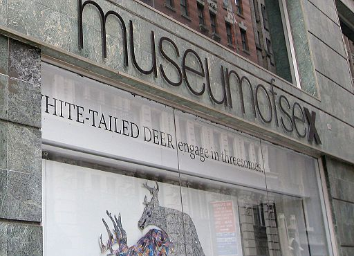 Museum of Sex, New York City, USA