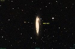 NGC 1421 DSS.jpg