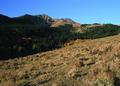 NRCSMT01047 - Montana (4943)(NRCS Photo Gallery).tif