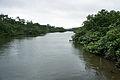 Nakama River Iriomote Okinawa Japan06s3.jpg