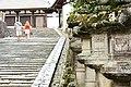 Nara (3810581125).jpg