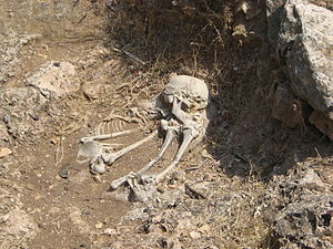 Archaeology of Israel - Natufian burial, Nahal Me'arot stream, Israel