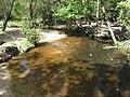 New Forrest - panoramio (3).jpg