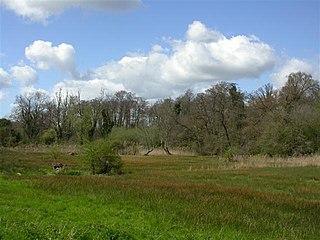 Newbourne Springs Suffolk Wildlife Trust nature reserve