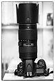 Nikon D800 with Nikon AF-S Nikkor 80–400 mm F4.5–5.6G ED VR lens.jpg