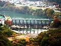 Nishiura Dam survey.jpg